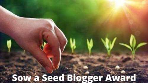 Sow a Seed Blogger Award banner 2