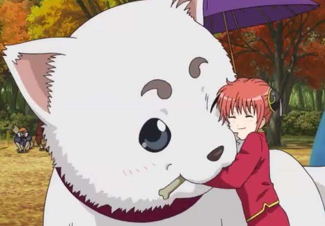 gintama sadaharu kagura Top 15 Cutest Anime Manga Animals You Desperately Want To Pet